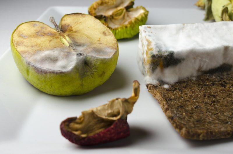 Pleśń w żywności – czy jest niebezpieczna?